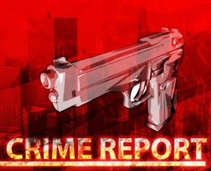 CIC Default Crime Report
