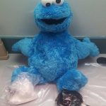 Stupid Crime of the Week: Suspect Tries to Hide Cocaine in Plush Cookie Monster